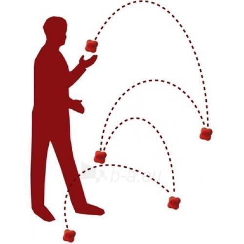 Reakcijos kamuoliukas SISSEL Ergo-Ball, raudonas Paveikslėlis 2 iš 2 250621100017