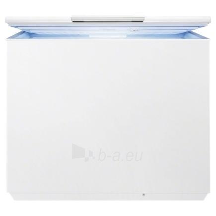 Box freezer Electrolux EC3201AOW Paveikslėlis 1 iš 1 250116001294