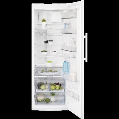 Refrigerator Electrolux ERF4161AOW Paveikslėlis 1 iš 1 250116001345