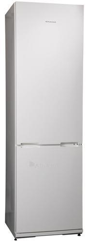 Šaldytuvas Snaigė RF39SM-P10022 Paveikslėlis 1 iš 1 250116001625