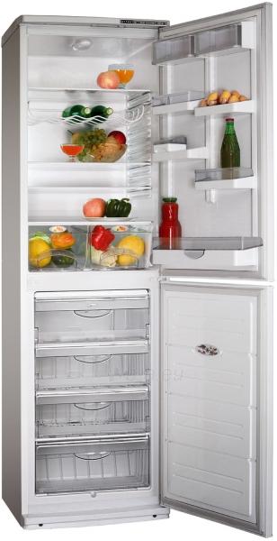Šaldytuvas - šaldiklis ATLANT XM-6025-080 Paveikslėlis 1 iš 1 250116000679