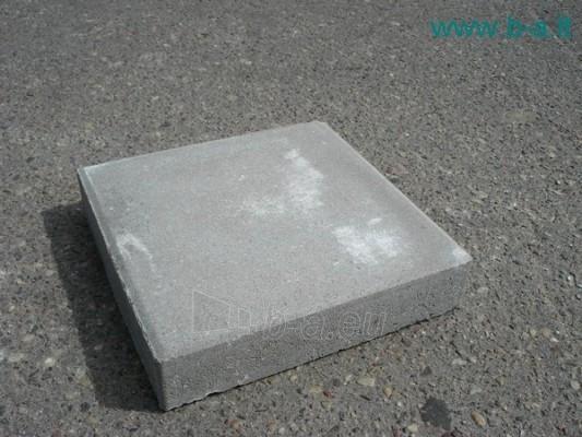 Sidewalk brick ŠP PLAZ M-6-F200 Paveikslėlis 1 iš 1 237020000004