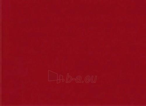 Šiferiui remontiniai dažai 0,5 kg. t.raudonos spalvos Paveikslėlis 1 iš 1 237112100049