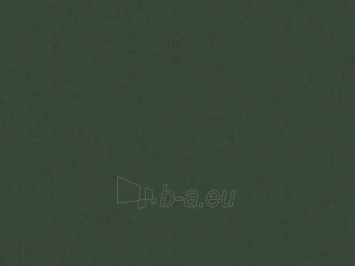 Šiferiui remontiniai dažai 0,5 kg. žalios spalvos Paveikslėlis 1 iš 1 237112100046