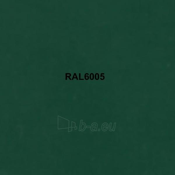 Spalvota skarda (poliesteris) RAL6005 žalia Paveikslėlis 1 iš 1 210260000005