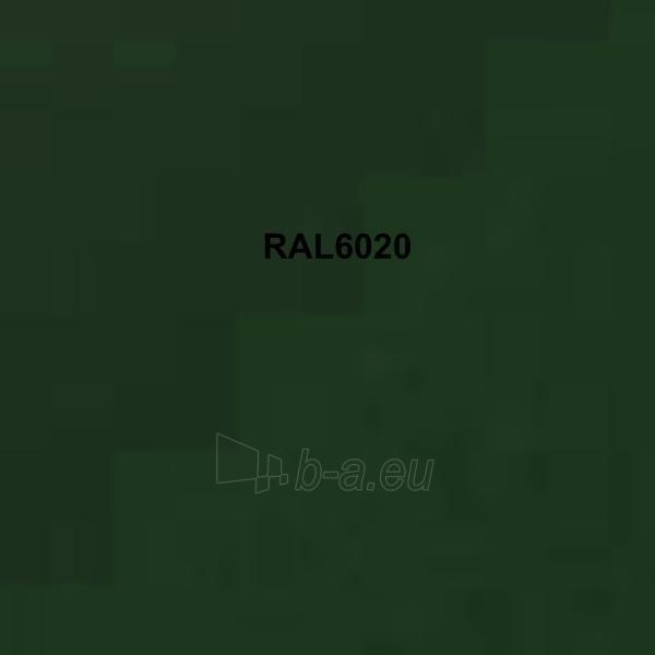 Spalvota skarda (poliesteris) RAL6020 tamsiai žalia Paveikslėlis 1 iš 1 210260000004