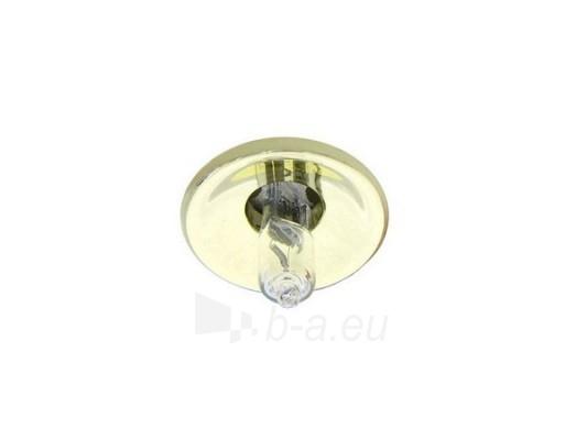Šviestuvas NETL-DJ10 PB G-4 auksas (skarda) Paveikslėlis 1 iš 1 224150000309