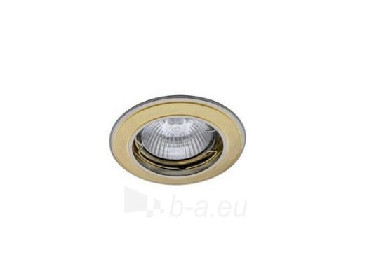 Šviestuvas NETL-DS02 SG/N satininis auksas/nikelis Paveikslėlis 1 iš 1 224150000315