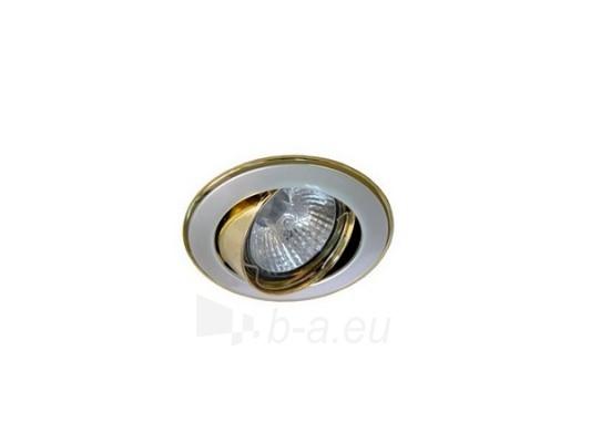 Šviestuvas NETL-DT02 PS/G perlinis sidabras/auksas Paveikslėlis 1 iš 1 224150000327