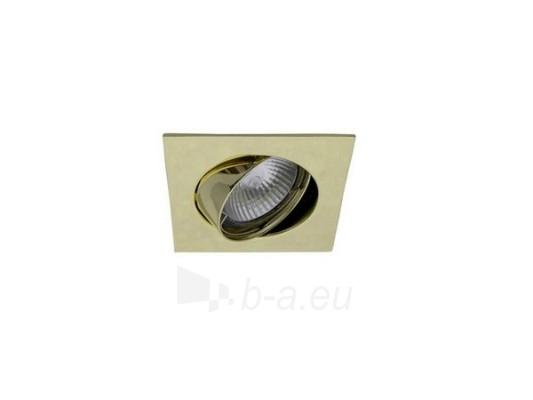 Šviestuvas NETL-DT10 PB auksas Paveikslėlis 1 iš 1 224150000331
