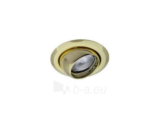 Šviestuvas NETL-E12 PB auksas (skarda) Paveikslėlis 1 iš 1 224150000320