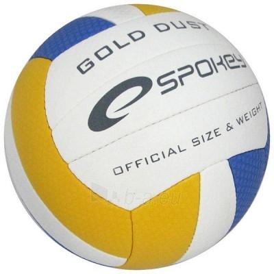 Tinklinio kamuolys Gold Dust BL/YE Paveikslėlis 1 iš 1 250520102019