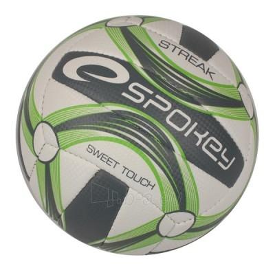 Tinklinio kamuolys Streak GR Paveikslėlis 1 iš 1 250520102031