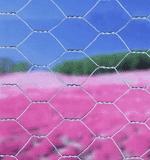 Tvoros tinklas 0.40x25m/15x9cm 48515 Paveikslėlis 1 iš 1 236419000115