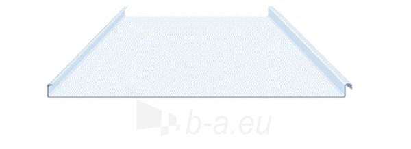 Valcuoto profilio skarda 0,45 mm (poliesteris) Paveikslėlis 1 iš 2 237110300040