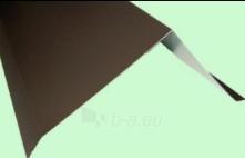Vėjalentė 65x95 mm (SP-PA) spalvotas Paveikslėlis 1 iš 2 237112600026