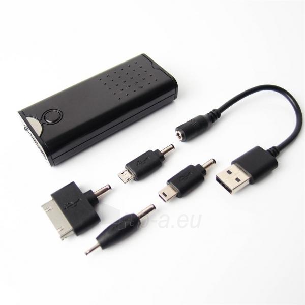AA baterijų pakrovėjas PowerNeed USB Paveikslėlis 1 iš 6 250256600347