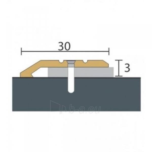 Aliuminio profilis P1 MAXI 270 cm aukso spalvos Paveikslėlis 1 iš 1 237712000603