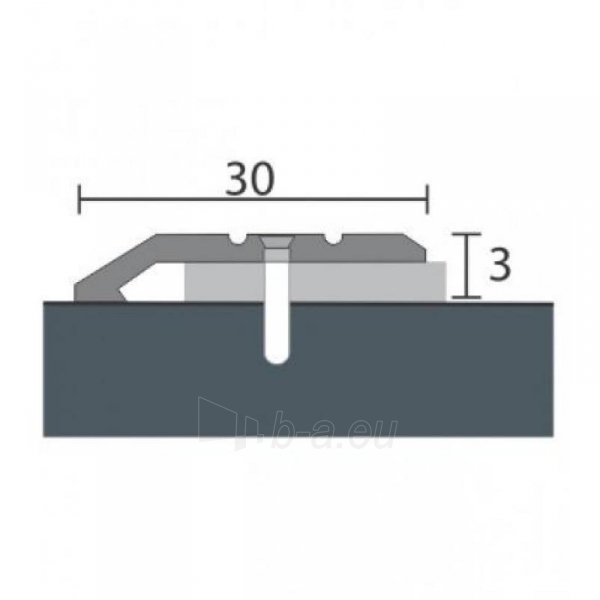 Alumīnija profils P1 MAXI 93 cm sudrabs Paveikslėlis 1 iš 1 237712000605
