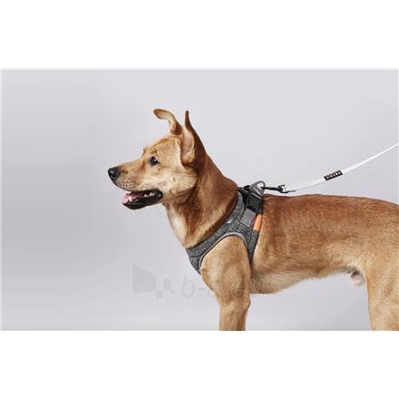 Antkaklis PETKIT Harness Air Pro M Grey Paveikslėlis 2 iš 3 310820168895