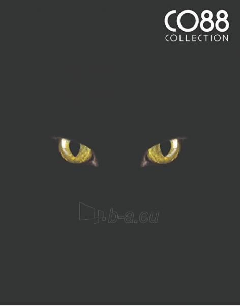 Apyrankė CO88 Agate Bracelet Cat Eyes 865-180-090043-0000 Paveikslėlis 2 iš 2 310820173439