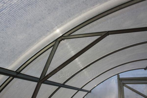 Arched polikarbonatinis surenkamas greenhouse 3x4 Paveikslėlis 3 iš 7 238700000126