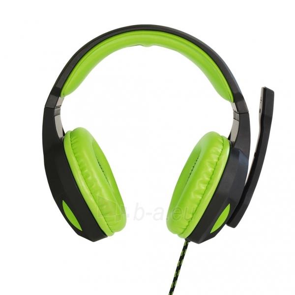 ART GAMING ausinės su mikrafonu LIZARD 1xmini Jack + adapter 2xmini Jack Paveikslėlis 2 iš 5 310820042370