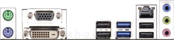 ASRock H81M-DGS, H81, DualDDR3-1600, SATA3, DVI, mATX Paveikslėlis 2 iš 2 250255051480