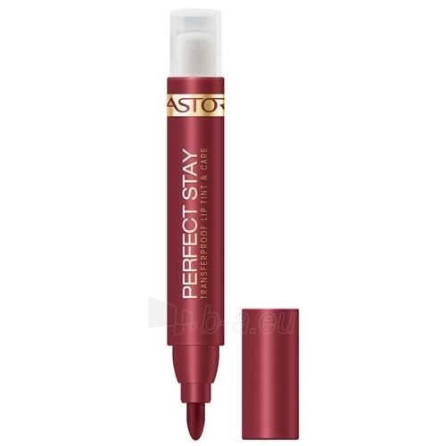 Astor Perfect Stay Lip Tint Cosmetic 10g Nude Plum Paveikslėlis 1 iš 1 250872200077