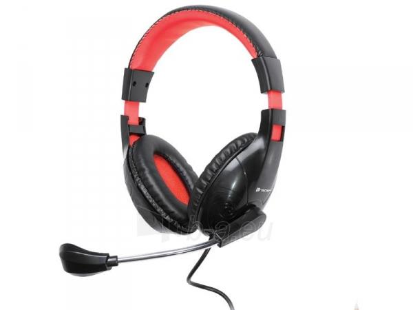 Headset  z mikrofonem TRACER DIZZY RED Paveikslėlis 1 iš 1 250255091155