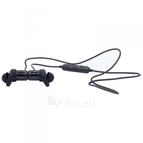 Ausinės QCY M1c Magnetic Bluetooth Earphones black (QCY-M1c) Paveikslėlis 2 iš 4 310820215583