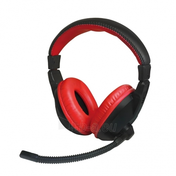 Ausinės su mikrofonu X-Zero X-H350HK Paveikslėlis 1 iš 3 250255091218