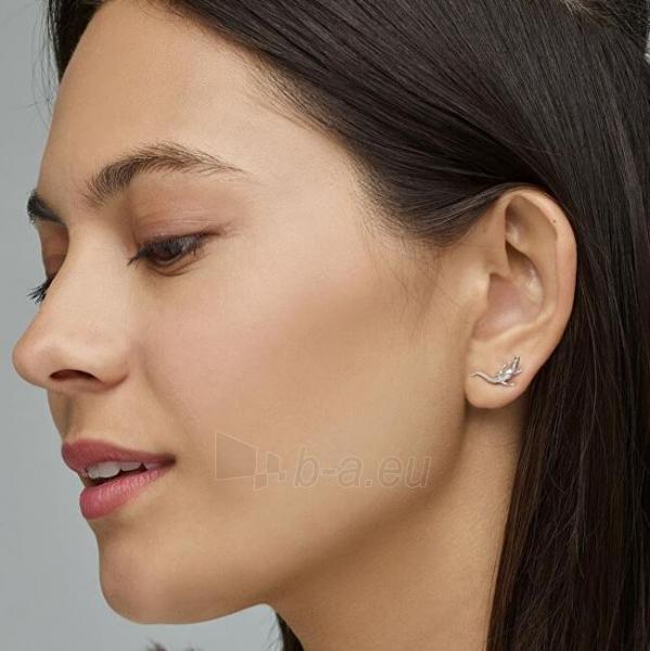 Auskarai Cluse Silver Alligator Earrings CLJ52018 Paveikslėlis 2 iš 3 310820183714