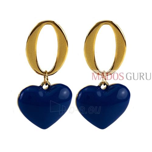 """Earrings """"Heart'' A355 Paveikslėlis 1 iš 2 30070000620"""