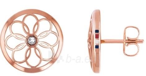 Auskarai Tommy Hilfiger Women´s gold plated earrings TH2780082 Paveikslėlis 1 iš 2 310820179330