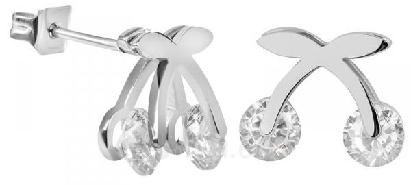Auskarai Troli Steel Earrings Kers-049 Paveikslėlis 1 iš 5 310820183967