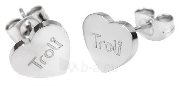 Auskarai Troli Steel heart earrings with KE-016 logo Paveikslėlis 1 iš 3 310820179434