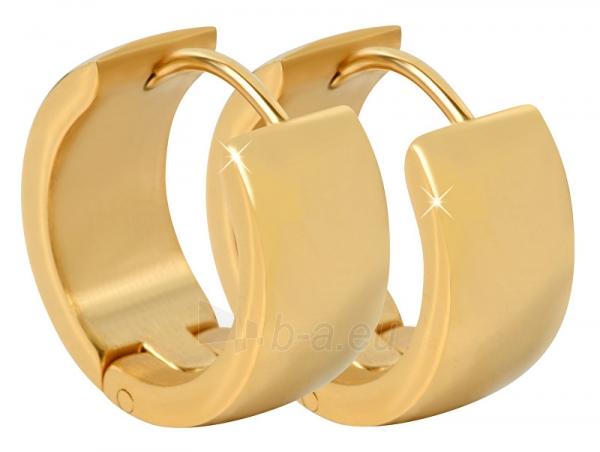 Auskarai Troli Wide, gold-plated steel earrings Paveikslėlis 1 iš 6 310820182242