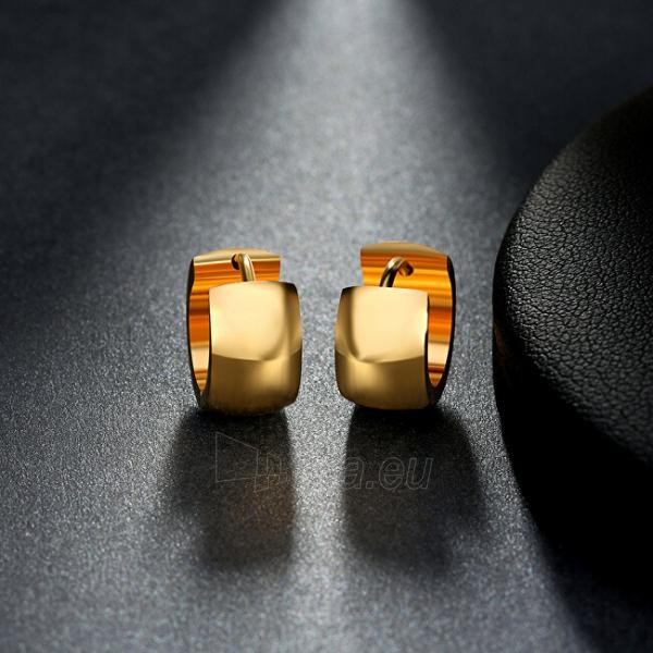 Auskarai Troli Wide, gold-plated steel earrings Paveikslėlis 5 iš 6 310820182242