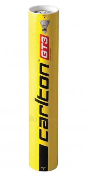 Badmintono plunksnelės Carlton GT3 12vnt Paveikslėlis 1 iš 1 310820040255