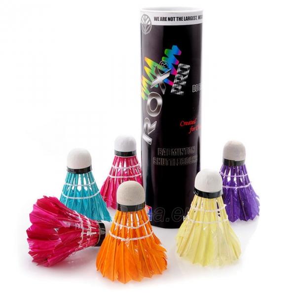 Badmintono plunksnelės ROX, Įvairių spalvų Paveikslėlis 1 iš 1 310820012044