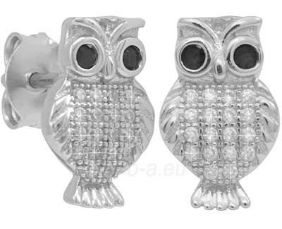 Beneto earrings Sova AGUP199 Paveikslėlis 1 iš 1 310820026021