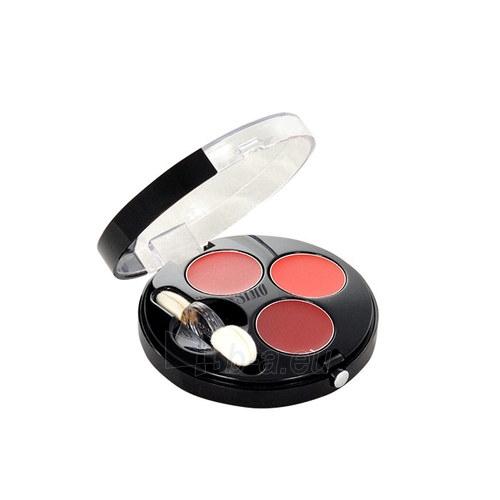 Blizgesys lūpoms BOURJOIS Paris Colorissimo Lips Palette Cosmetic 1,8g Paveikslėlis 1 iš 1 310820038097