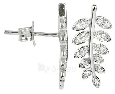 Brilio Silver sidabriniai auskarai Kapradinové listy 33G3032 Paveikslėlis 1 iš 1 310820026049