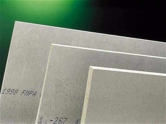 The cement-bonded particle board (Cetris) 1250x2600x10 mm (3,25 sq.m.) Paveikslėlis 1 iš 1 237360000011