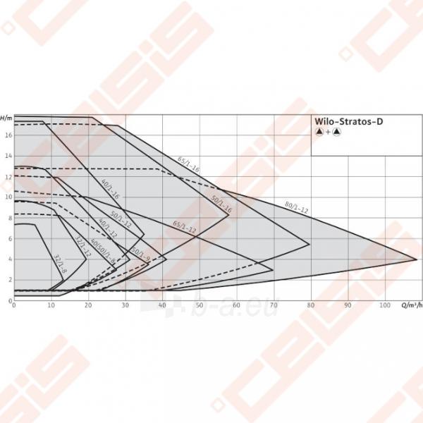 Cirkuliacinis siurblys negeriamam vandeniui Wilo-Stratos-D 40/1-12; 1~230V Paveikslėlis 6 iš 7 270831000384