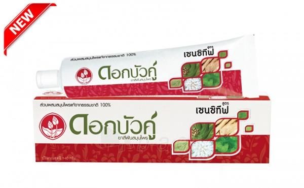 Dantų pasta Twin Lotus Herbal Sensitiv e 140 ml Paveikslėlis 1 iš 1 310820208547