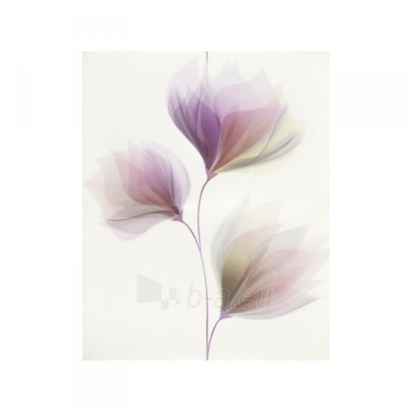 Dekorinės tiles LORIS gėlė 2 vnt. 25x40 cm Paveikslėlis 1 iš 1 310820062556