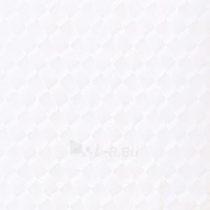Dekoruota dailylentė 250 mm. SR 2126 Paveikslėlis 1 iš 1 237714000534