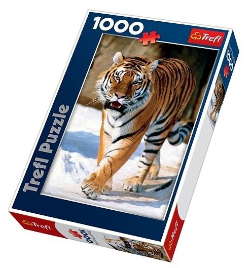 Dėlionė TREFLSibiro tigras 1000 det. 10135 Paveikslėlis 1 iš 2 250710100596